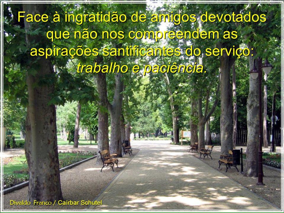 O trabalho granjeia méritos redentores e a paciência coloca o sinete da autenticidade em nossas resoluções. Divaldo Franco / Caírbar Schutel
