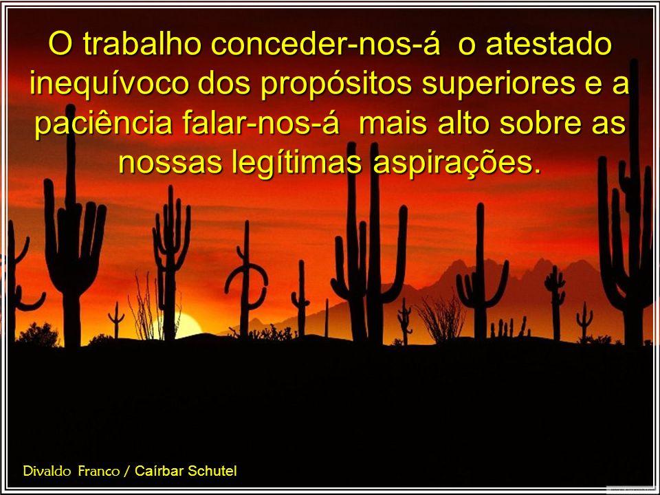 Face à ingratidão de amigos devotados que não nos compreendem as aspirações santificantes do serviço: trabalho e paciência. Divaldo Franco / Caírbar S