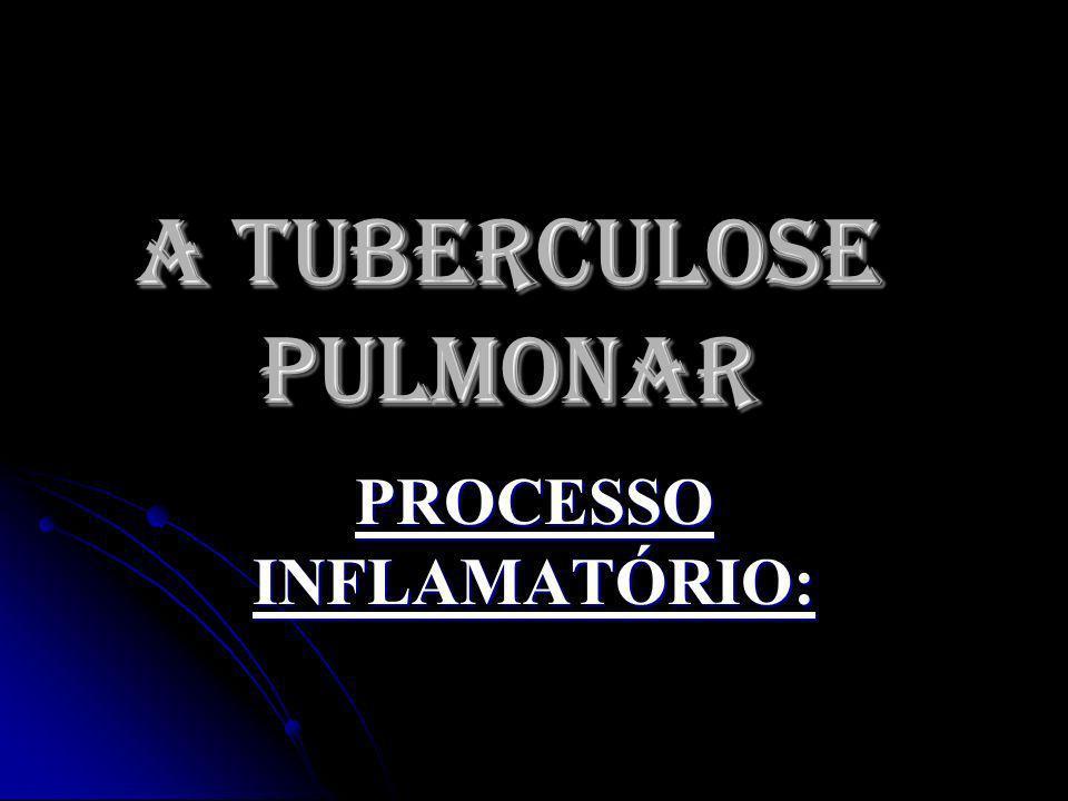 A TUBERCULOSE PULMONAR PROCESSO INFLAMATÓRIO: