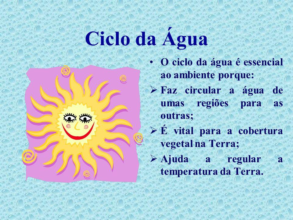 Ciclo da Água O ciclo da água é essencial ao ambiente porque: Faz circular a água de umas regiões para as outras; É vital para a cobertura vegetal na Terra; Ajuda a regular a temperatura da Terra.
