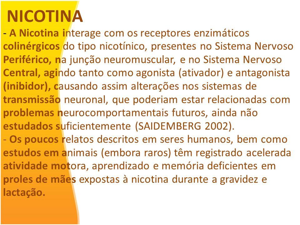 NEUROTOXINAS AMBIENTAIS Agrotóxicos A exposição humana aos agtox. pode ocorrer de diversas formas: aplicação dos produtos, trabalho na produção, lavag