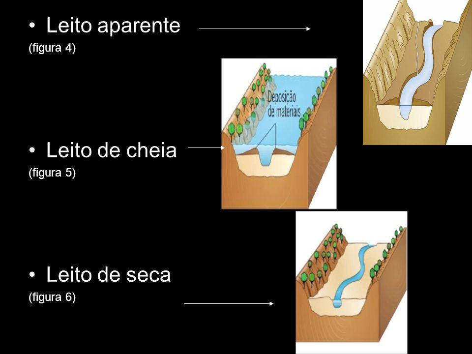 Leito aparente (figura 4) Leito de cheia (figura 5) Leito de seca (figura 6)