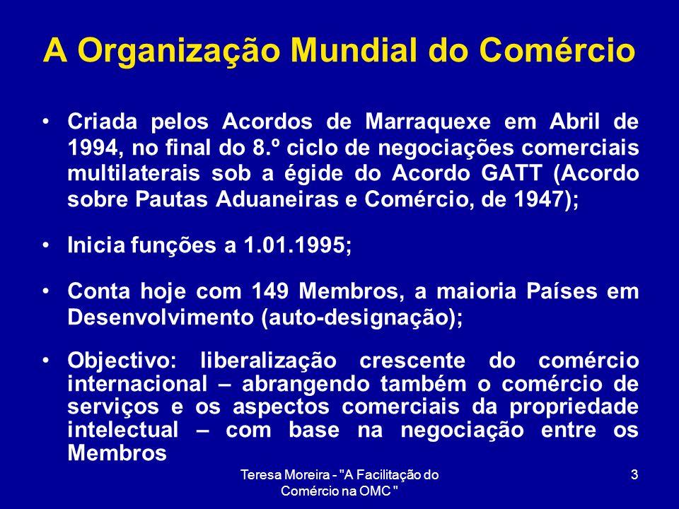 Teresa Moreira -