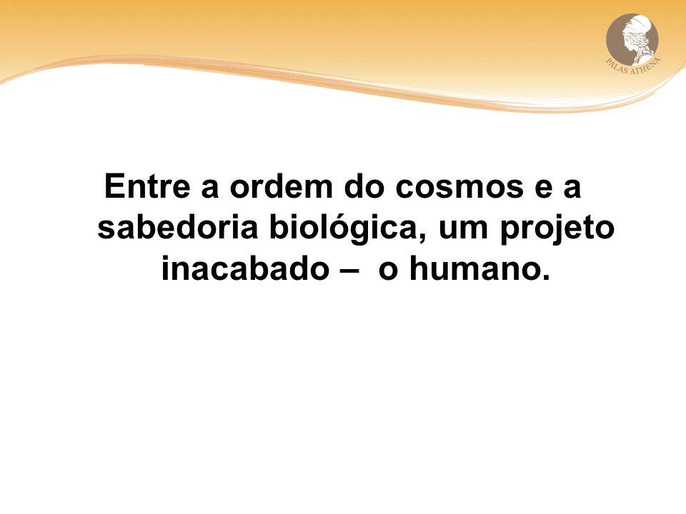 Entre a ordem do cosmos e a sabedoria biológica, um projeto inacabado – o humano.