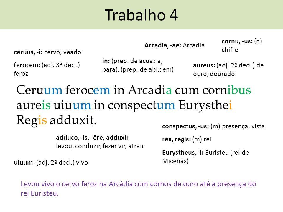 Trabalho 4 Ceruum ferocem in Arcadia cum cornibus aureis uiuum in conspectum Eurysthei Regis adduxit. adduco, -is, -ĕre, adduxi: levou, conduzir, faze
