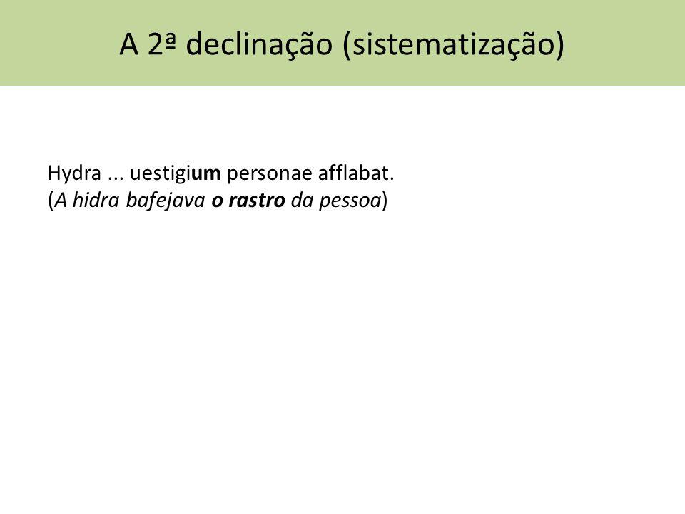 A 2ª declinação (sistematização) Hydra... uestigium personae afflabat. (A hidra bafejava o rastro da pessoa)