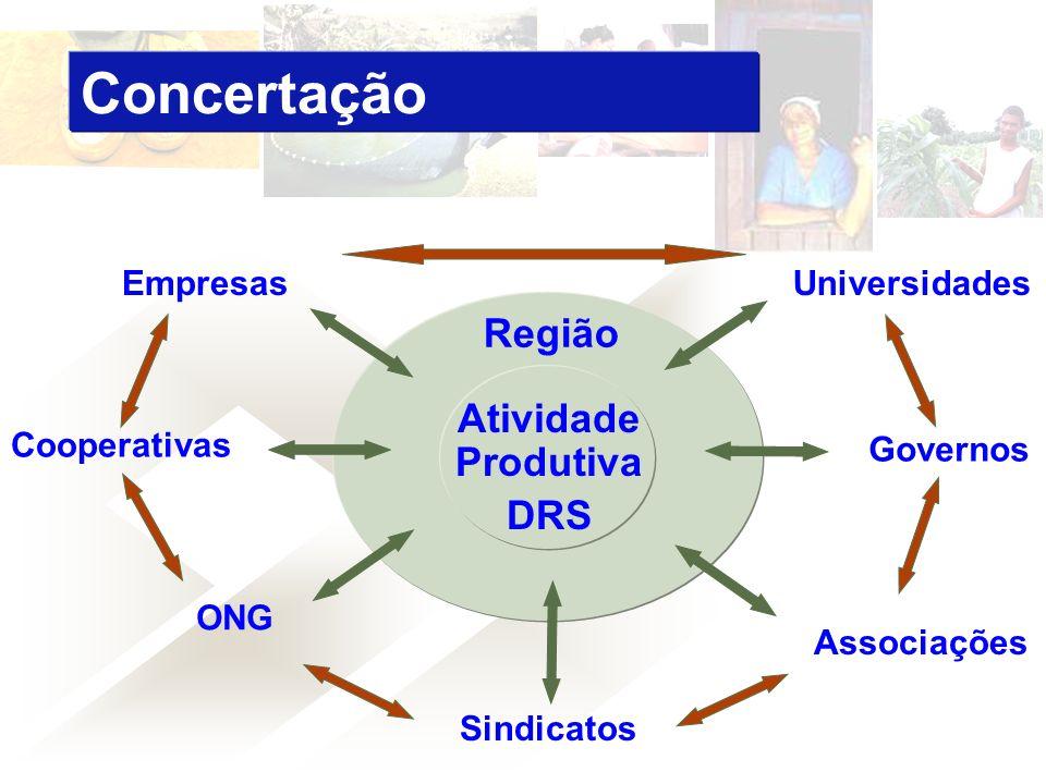 Empresas Cooperativas ONG Sindicatos Associações Universidades Governos Região Atividade Produtiva DRS Concertação