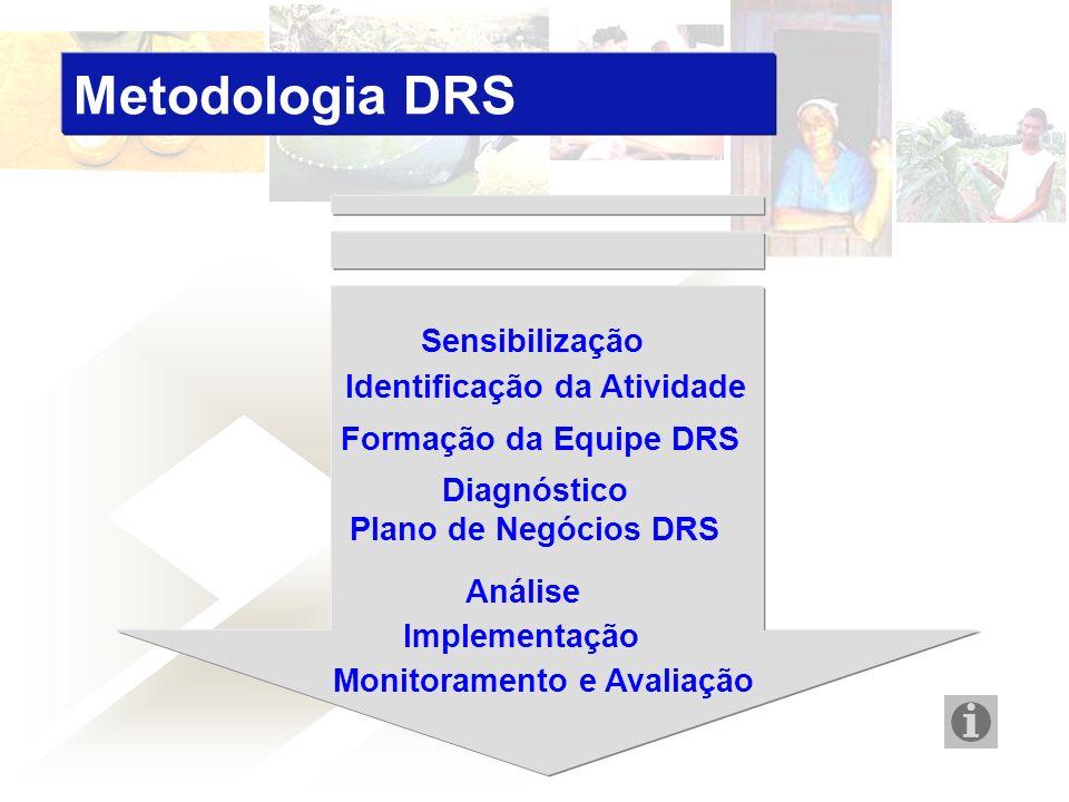 Metodologia DRS Identificação da Atividade Monitoramento e Avaliação Sensibilização Formação da Equipe DRS Diagnóstico Plano de Negócios DRS Análise Implementação