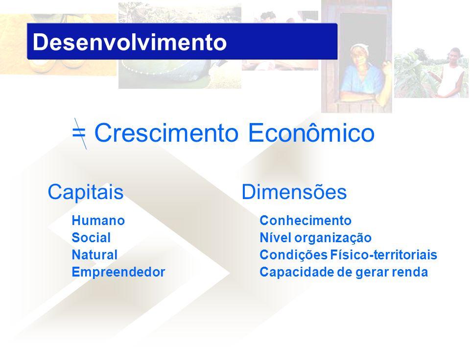 = Crescimento Econômico Capitais Dimensões Humano Conhecimento Social Nível organização Natural Condições Físico-territoriais Empreendedor Capacidade de gerar renda Desenvolvimento