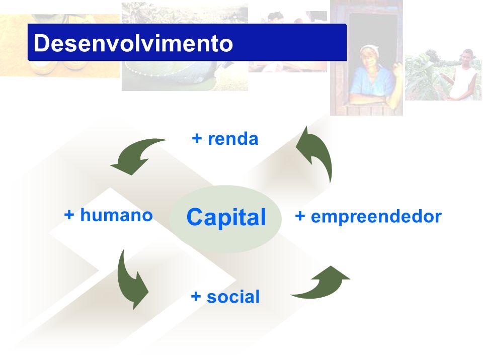 Capital + humano + social + empreendedor + renda Desenvolvimento