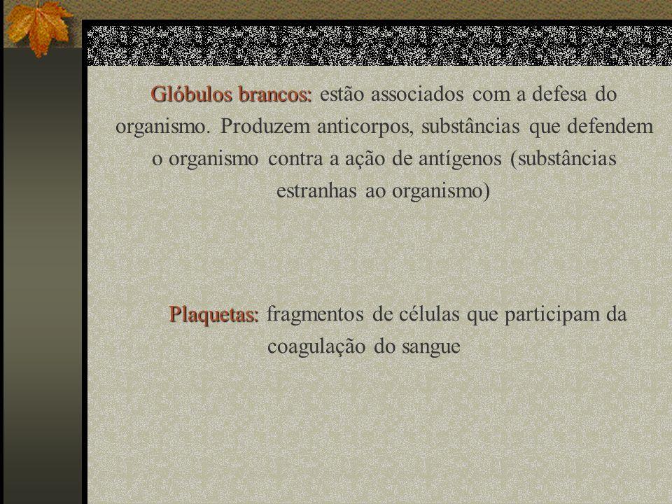 Plaquetas: Plaquetas: fragmentos de células que participam da coagulação do sangue Glóbulos brancos: Glóbulos brancos: estão associados com a defesa d