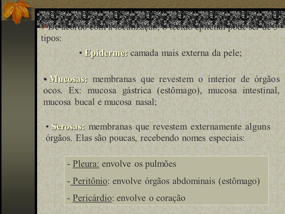 De acordo com a localização, o tecido epitelial pode ser de 3 tipos: Epiderme: Epiderme: camada mais externa da pele; Mucosas: Mucosas: membranas que revestem o interior de órgãos ocos.