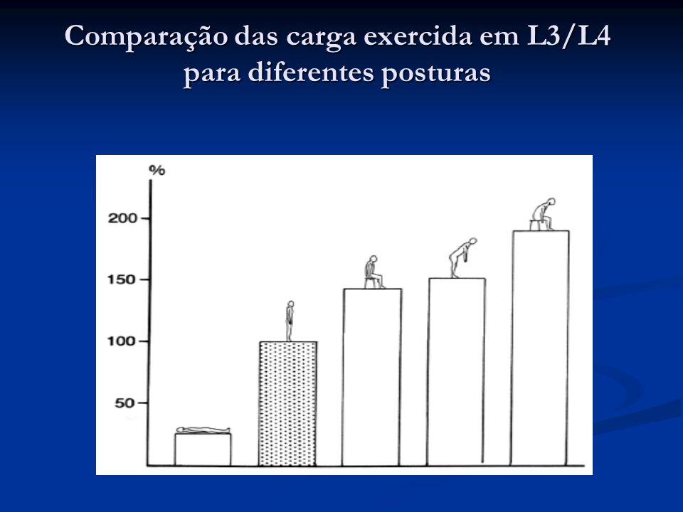 Influência da carga e postura