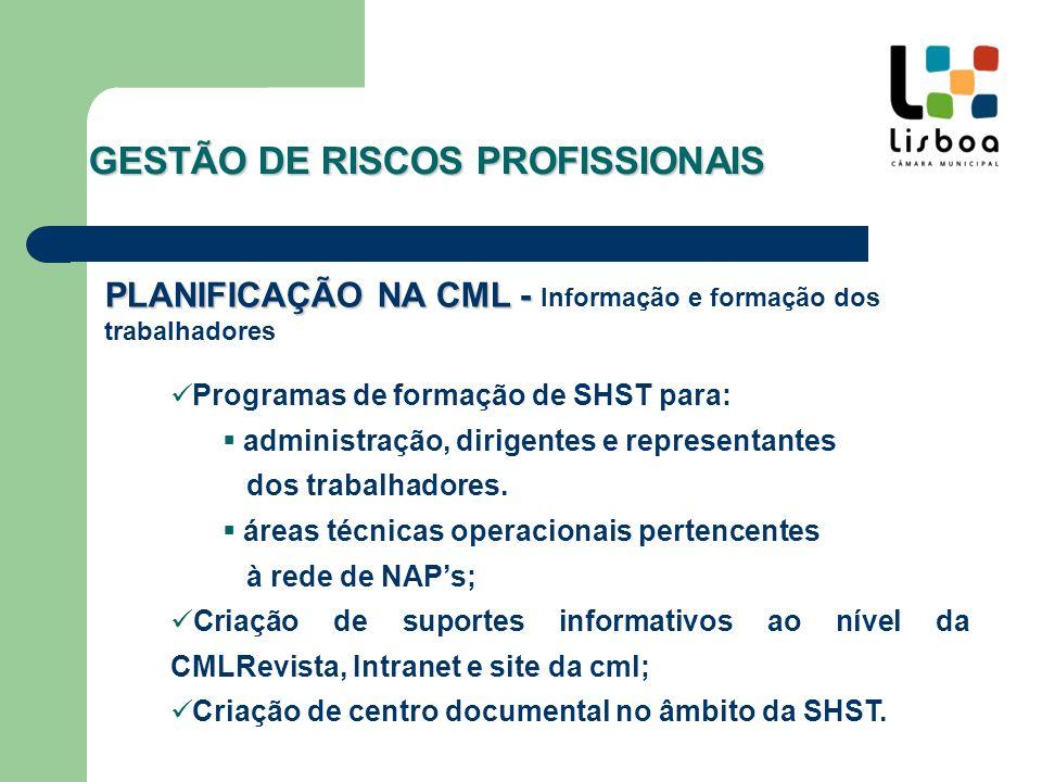 IMPLEMENTAÇÃO E COORDENAÇÃO NA CML I mplementação de procedimentos Coordenação inter-departamental Coordenação inter-serviços GESTÃO DE RISCOS PROFISSIONAIS
