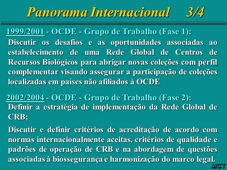 1999/2001 - OCDE - Grupo de Trabalho (Fase 1): Discutir os desafios e as oportunidades associadas ao estabelecimento de uma Rede Global de Centros de