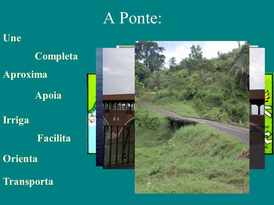 A Ponte: Irriga Aproxima Completa Transporta Facilita Apoia Orienta Une Possibilita a interação