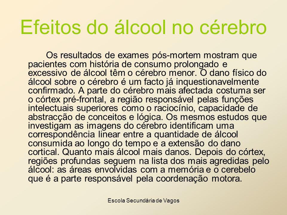Escola Secundária de Vagos Efeitos do álcool no cérebro Os resultados de exames pós-mortem mostram que pacientes com história de consumo prolongado e