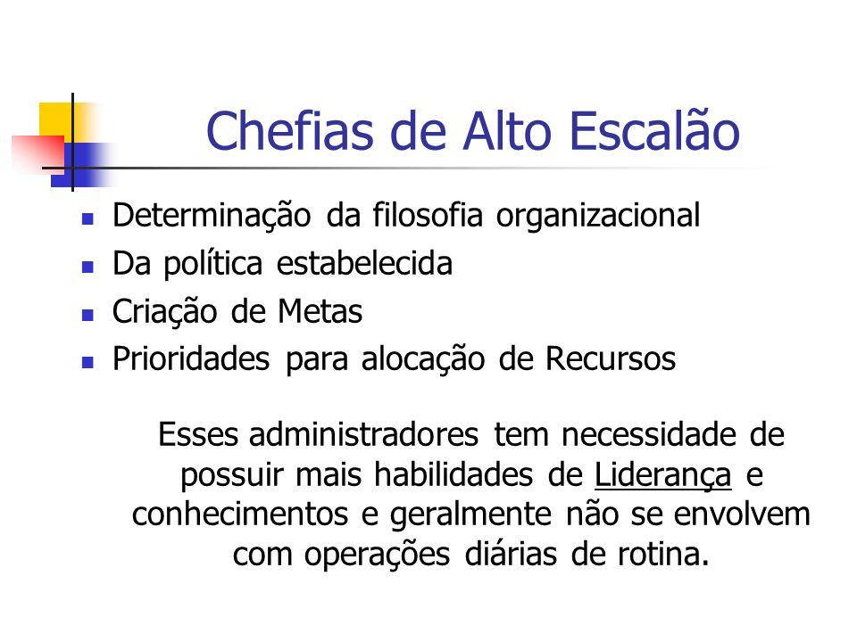 Chefias de Médio Escalão Conduzem esforços nos níveis hierárquicos mais inferiores, constituindo o canal entre as chefias de nível superior e inferior.