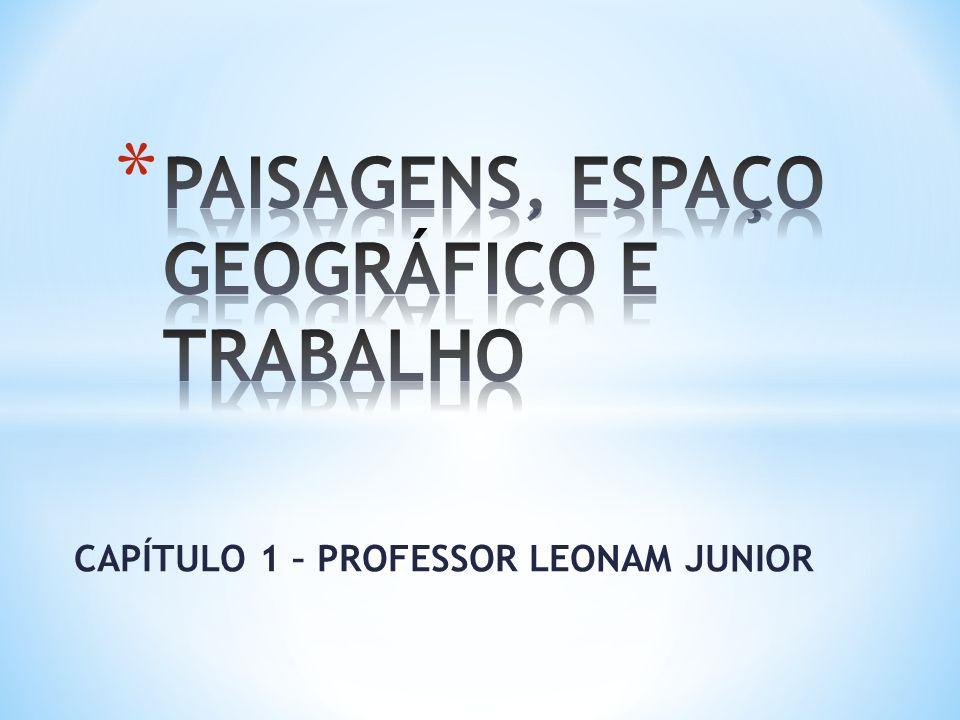 CAPÍTULO 1 – PROFESSOR LEONAM JUNIOR