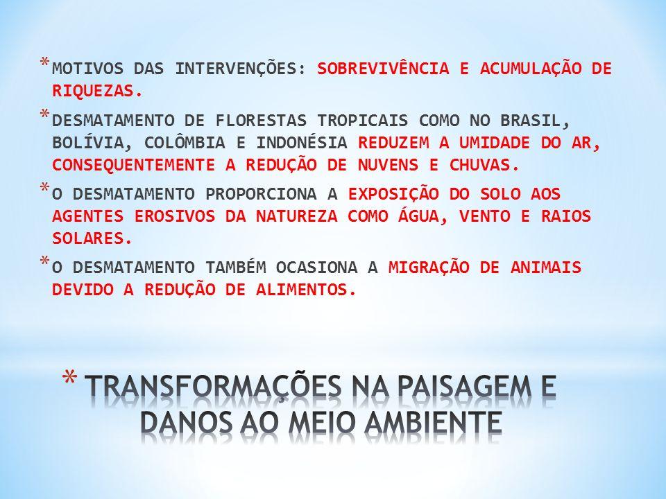 COM O SOLO EXPOSTO, OS SEDIMENTOS LEVADOS PELA EROSÃO SÃO DEPOSITADOS NOS LEITOS DOS RIOS CAUSANDO INUNDAÇÕES.