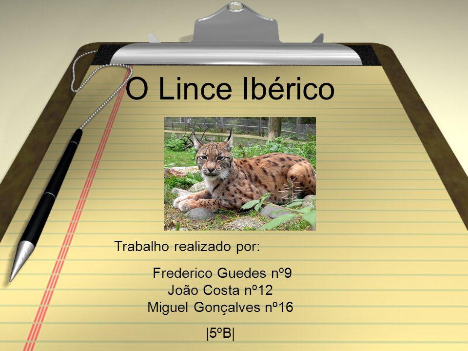 O Lince Ibérico Trabalho realizado por: Frederico Guedes nº9 João Costa nº12 Miguel Gonçalves nº16 |5ºB|