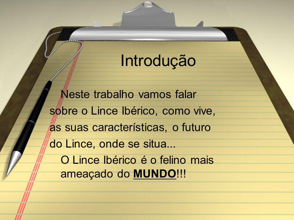 Bibliografia www.diariodigital.es www.lynxpardinus.naturlink.pt www.pt.wikipedia.org\wiki\Lince Ibérico www.carnivora.fc.ul.pt\lince.htm www.ambiente.dec.uc.pt/~pxavier/lince.ht ml www.sotaodaines.chrome.pt/sotao/lince.ht ml www.lynx.uio.no/jon/lynx/lyxpt02p.htm