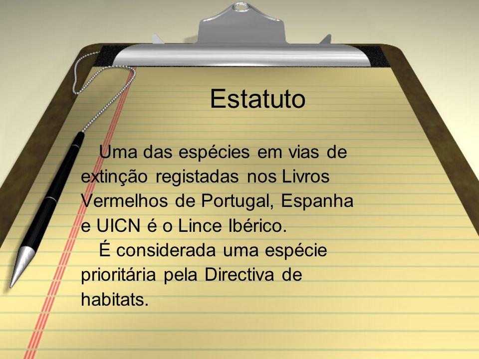 Estatuto Uma das espécies em vias de extinção registadas nos Livros Vermelhos de Portugal, Espanha e UICN é o Lince Ibérico.