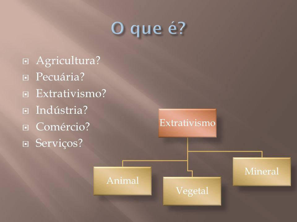 Agricultura? Pecuária? Extrativismo? Indústria? Comércio? Serviços? Extrativismo Animal Vegetal Mineral