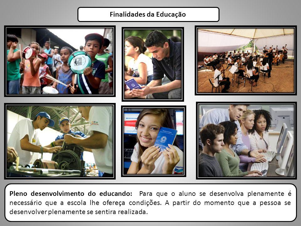 Finalidades da Educação Pleno desenvolvimento do educando: Para que o aluno se desenvolva plenamente é necessário que a escola lhe ofereça condições.