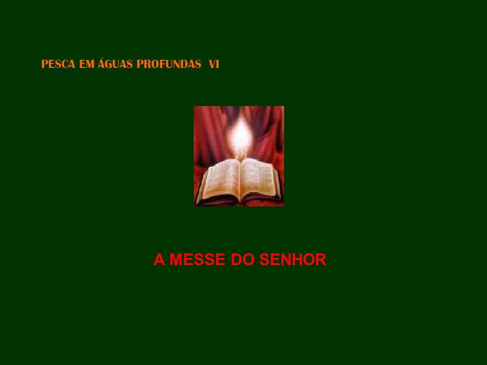PESCA EM ÁGUAS PROFUNDAS VI A MESSE DO SENHOR