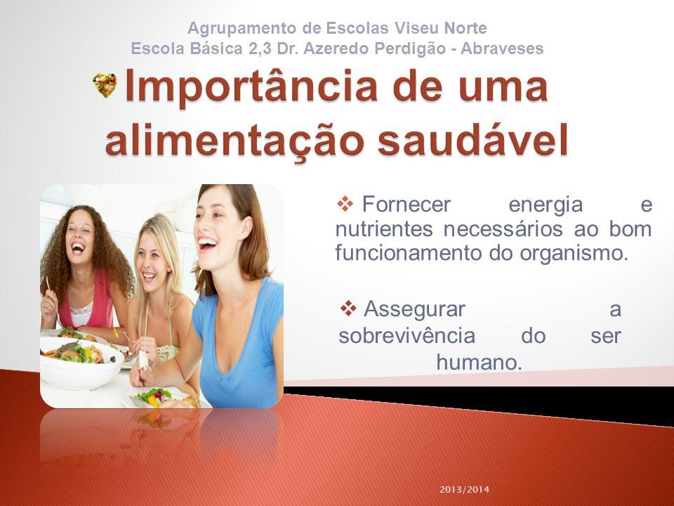 2013/2014 Assegurar a sobrevivência do ser humano. Fornecer energia e nutrientes necessários ao bom funcionamento do organismo. Agrupamento de Escolas