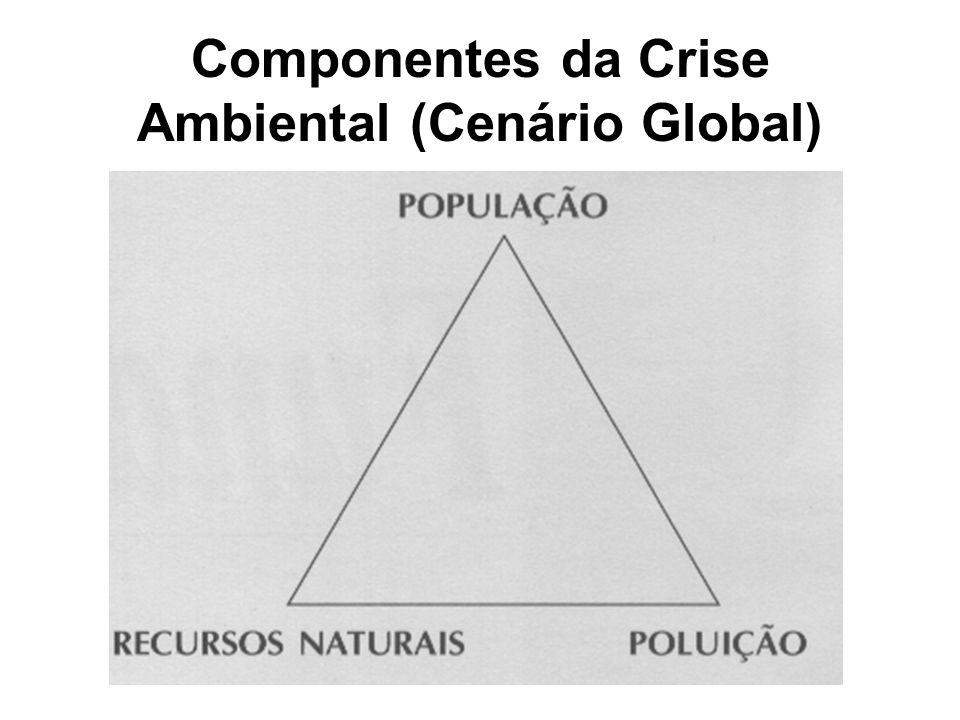 Componentes da Crise Ambiental (Cenário Global)