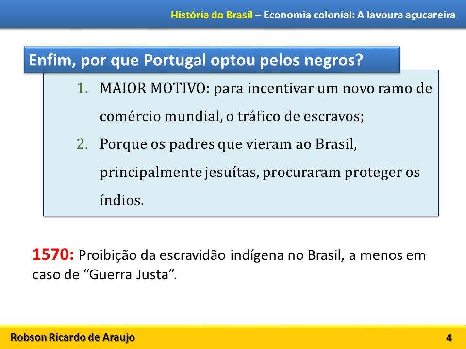 Robson Ricardo de Araujo História do Brasil – Economia colonial: A lavoura açucareira 4 1.MAIOR MOTIVO: para incentivar um novo ramo de comércio mundi