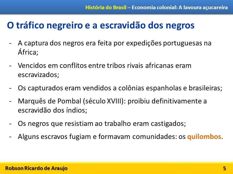 Robson Ricardo de Araujo História do Brasil – Economia colonial: A lavoura açucareira 5 O tráfico negreiro e a escravidão dos negros -A captura dos ne