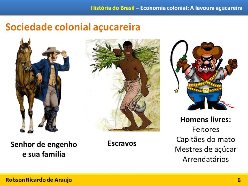 Robson Ricardo de Araujo História do Brasil – Economia colonial: A lavoura açucareira 6 Sociedade colonial açucareira Senhor de engenho e sua família Escravos Homens livres: Feitores Capitães do mato Mestres de açúcar Arrendatários