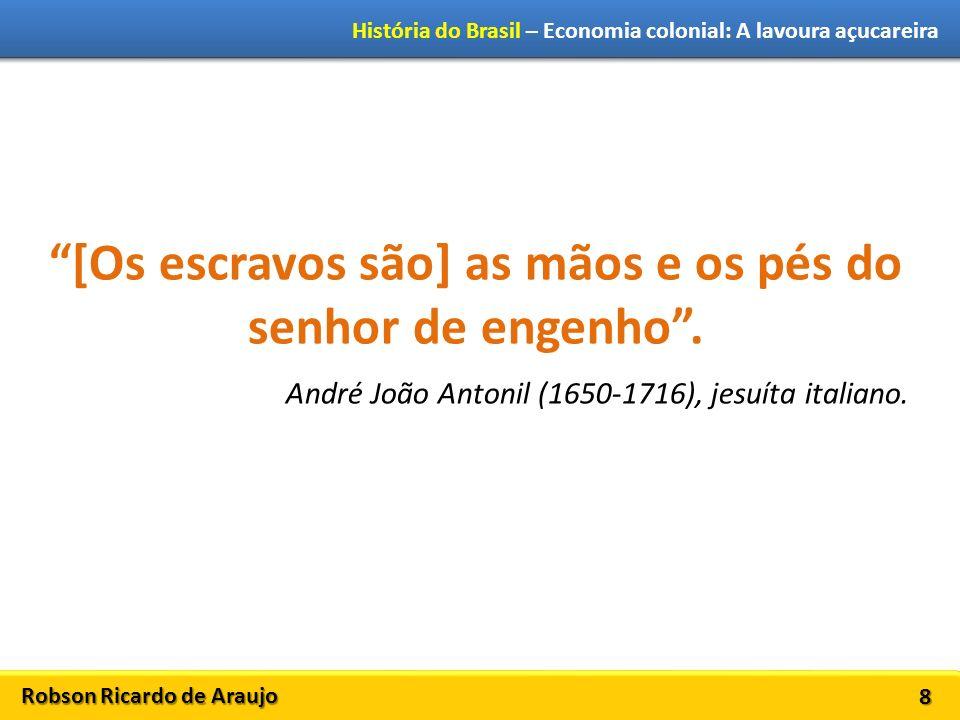 Robson Ricardo de Araujo História do Brasil – Economia colonial: A lavoura açucareira 8 [Os escravos são] as mãos e os pés do senhor de engenho.