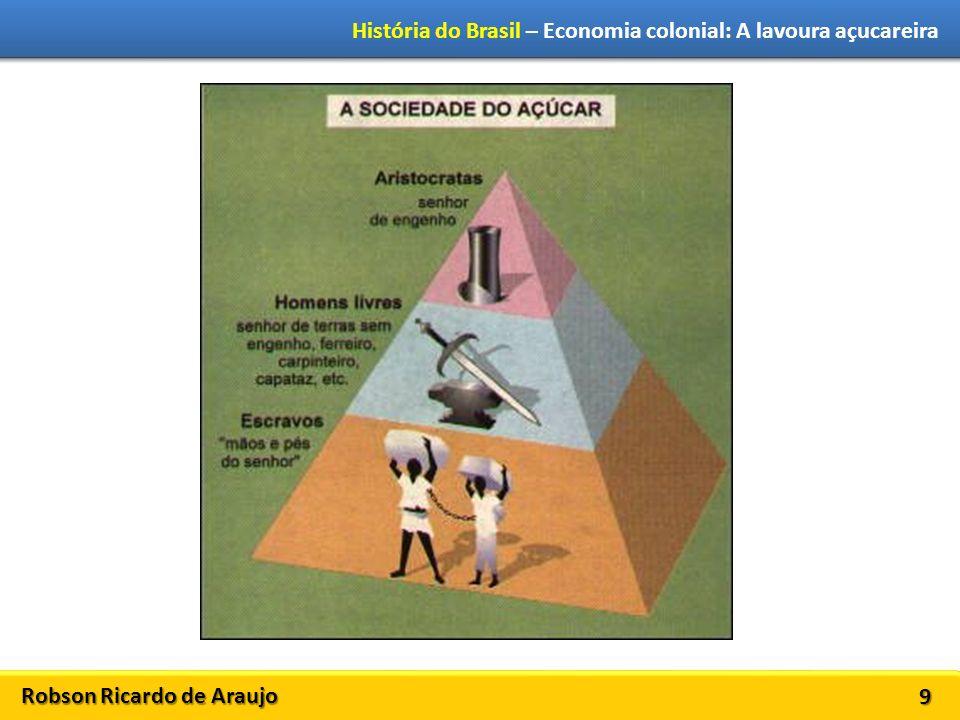 Robson Ricardo de Araujo História do Brasil – Economia colonial: A lavoura açucareira 9