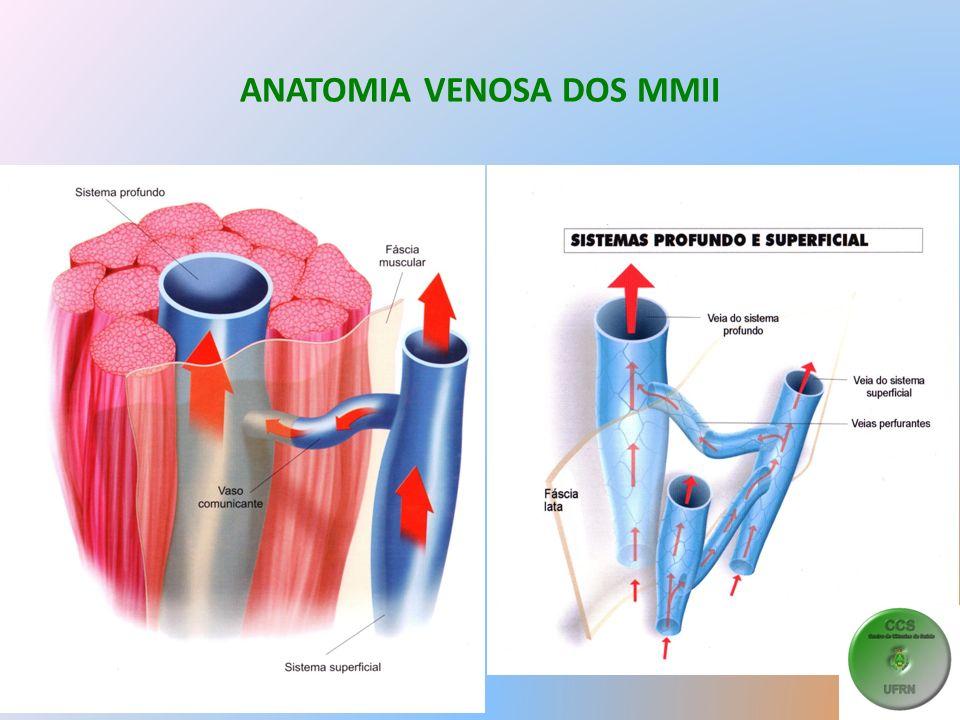 VARIZES PRIMÁRIAS ou ESSENCIAIS Fisiopatologia – As veias varicosas NÃO esvaziam durante o exercício – A pressão venosa no tornozelo CAI MENOS nos varicosos ao deambular.