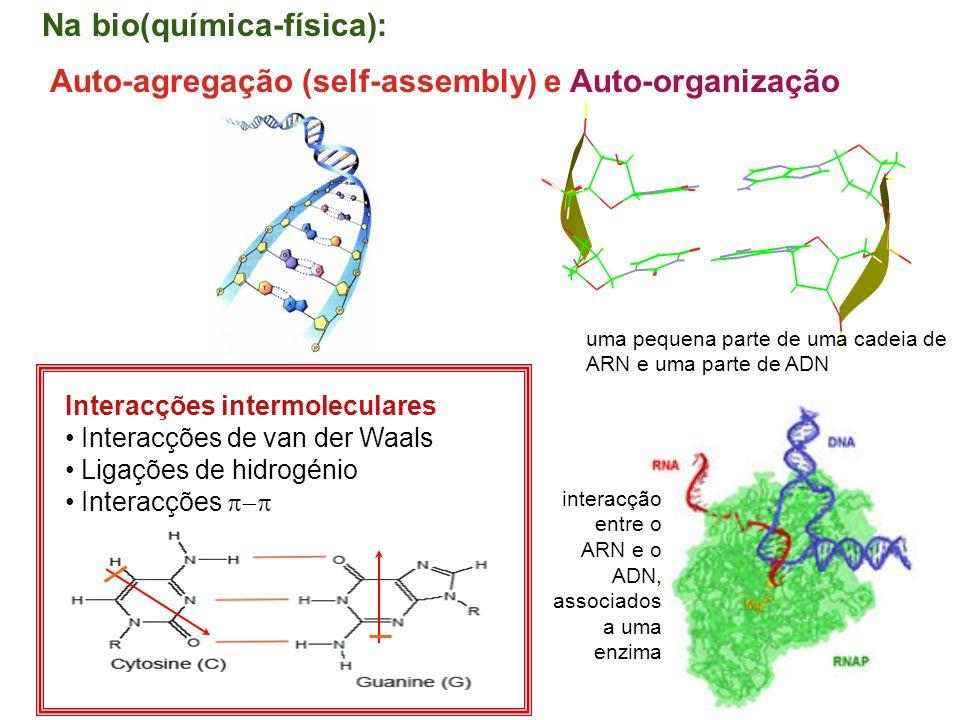 2 interacção entre o ARN e o ADN, associados a uma enzima uma pequena parte de uma cadeia de ARN e uma parte de ADN Auto-agregação (self-assembly) e A