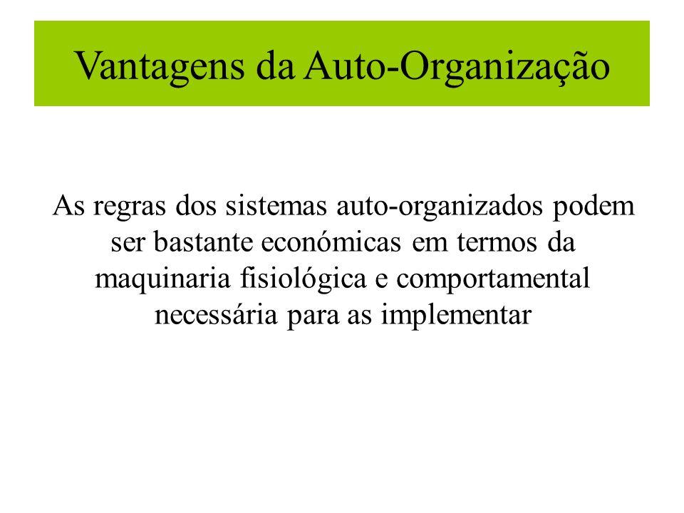 Vantagens da Auto-Organização As regras dos sistemas auto-organizados podem ser bastante económicas em termos da maquinaria fisiológica e comportament