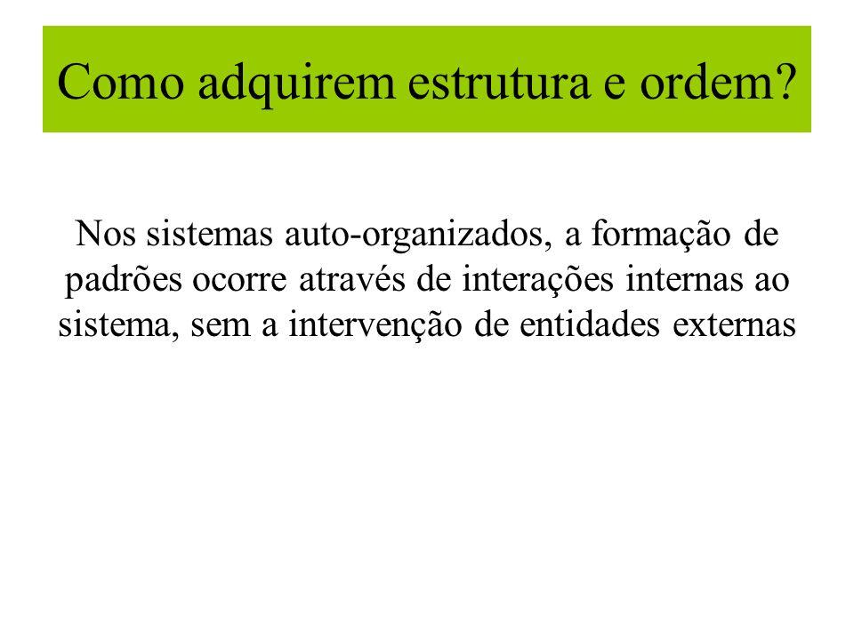 Como adquirem estrutura e ordem? Nos sistemas auto-organizados, a formação de padrões ocorre através de interações internas ao sistema, sem a interven