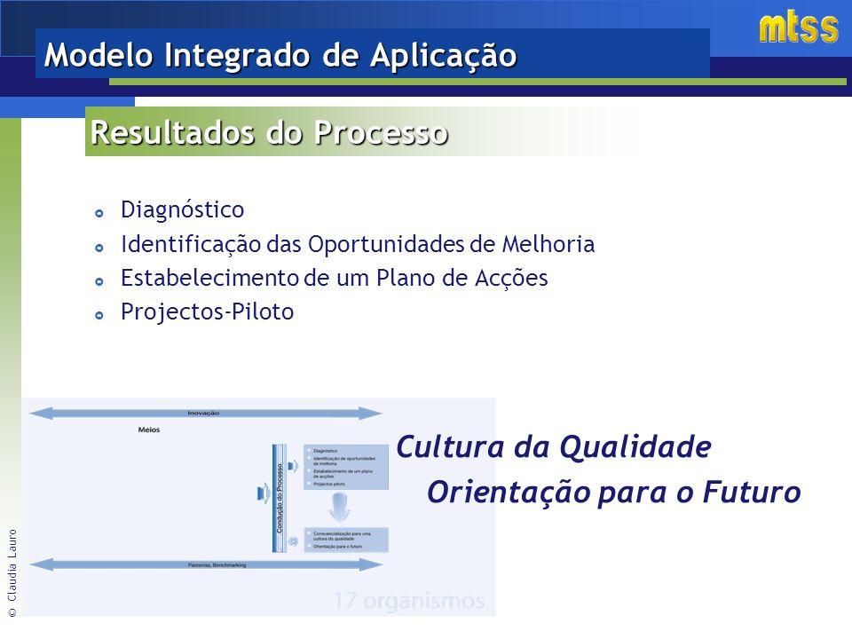 © Claudia Lauro Modelo Integrado de Aplicação Resultados do Processo Diagnóstico Identificação das Oportunidades de Melhoria Estabelecimento de um Plano de Acções Projectos-Piloto Cultura da Qualidade Orientação para o Futuro