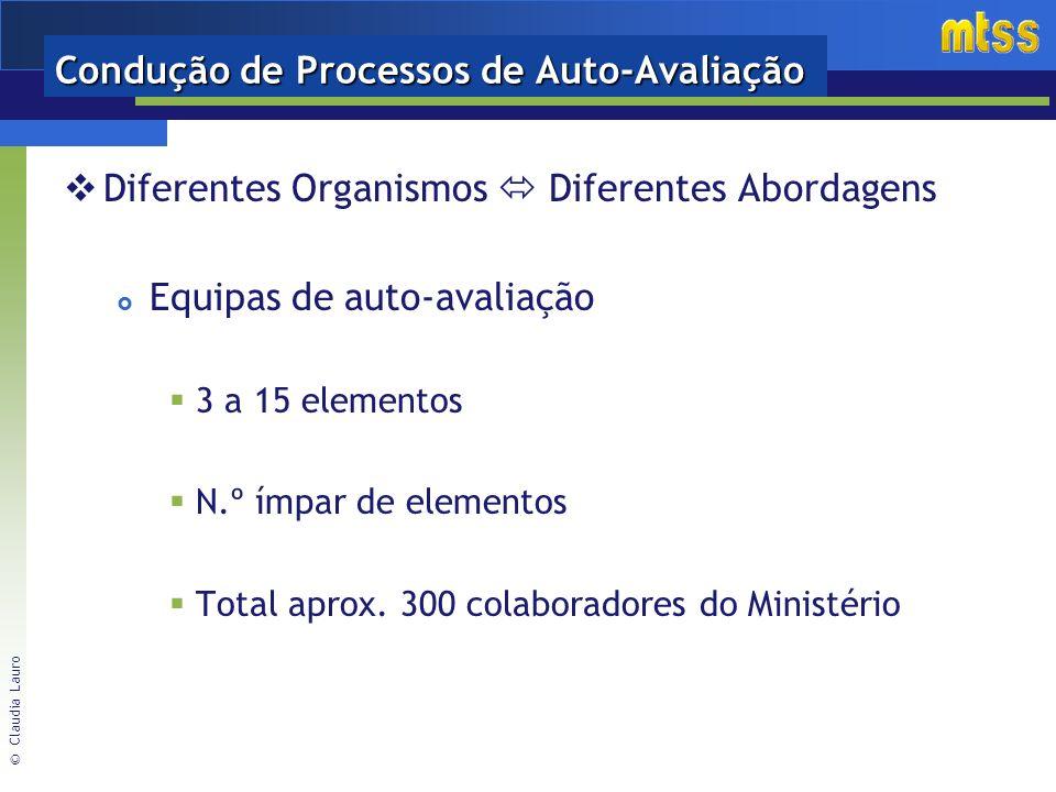 © Claudia Lauro Condução de Processos de Auto-Avaliação Diferentes Organismos Diferentes Abordagens Equipas de auto-avaliação 3 a 15 elementos N.º ímpar de elementos Total aprox.