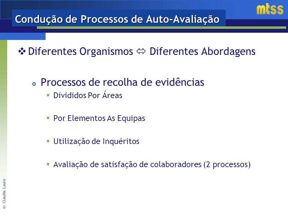 © Claudia Lauro Condução de Processos de Auto-Avaliação Diferentes Organismos Diferentes Abordagens Processos de recolha de evidências Divididos Por Áreas Por Elementos As Equipas Utilização de Inquéritos Avaliação de satisfação de colaboradores (2 processos)