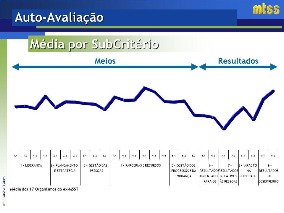 © Claudia Lauro Auto-AvaliaçãoMeiosResultados Média dos 17 Organismos do ex-MSST Média por SubCritério