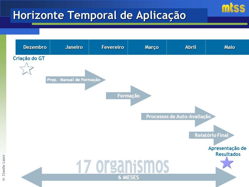 © Claudia Lauro Horizonte Temporal de Aplicação DezembroJaneiroFevereiroMarçoAbrilMaio Criação do GT Formação Prep.