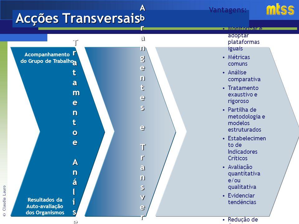 © Claudia Lauro Acções Transversais Acções Acções AbrangentesAbrangenteseeTransversaisTransversaisaoMTSSaoMTSSAcções Acções AbrangentesAbrangenteseeTransversaisTransversaisaoMTSSaoMTSSe Vantagens: Monitorizar e adoptar plataformas iguais Métricas comuns Análise comparativa Tratamento exaustivo e rigoroso Partilha de metodologia e modelos estruturados Estabelecimen to de Indicadores Críticos Avaliação quantitativa e/ou qualitativa Evidenciar tendências Redução de Custos Base sólida para o apoio à decisão TratamentoTratamentoeAnáliseeAnáliseTratamentoTratamentoeAnáliseeAnálise Resultados da Auto-avaliação dos Organismos Acompanhamento do Grupo de Trabalho