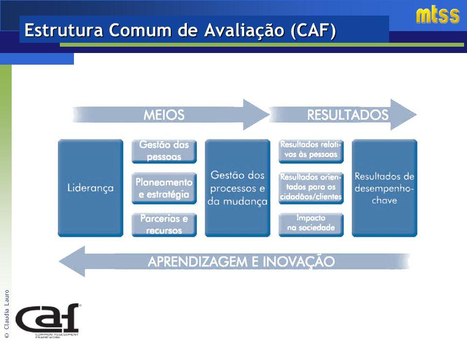 © Claudia Lauro Estrutura Comum de Avaliação (CAF)
