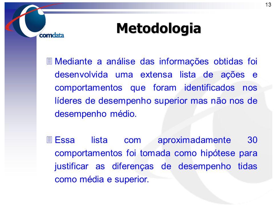 12Metodologia 3Foram selecionadas amostras de times com líderes externos de desempenho médio e superior. 3Mediante a entrevistas cegas com 19 particip