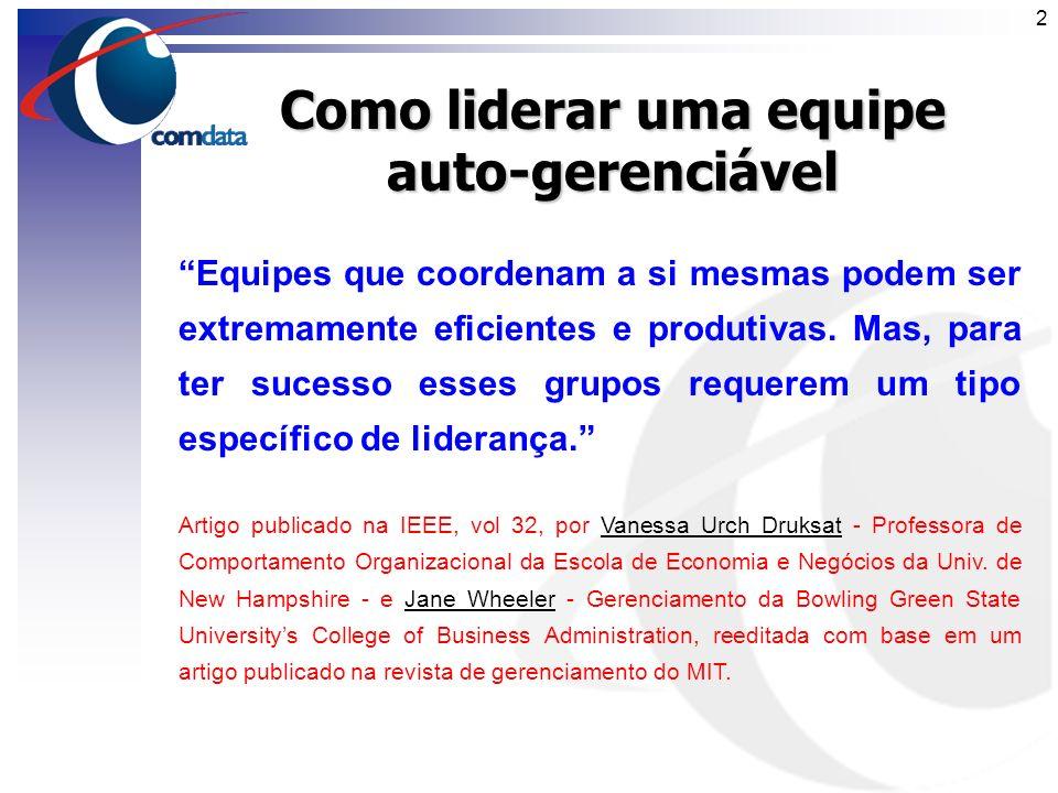 1 Wash-up Comdata-DTE Como Liderar uma Equipe Auto-Gerenciável Sérgio Kafuri Fev/2005